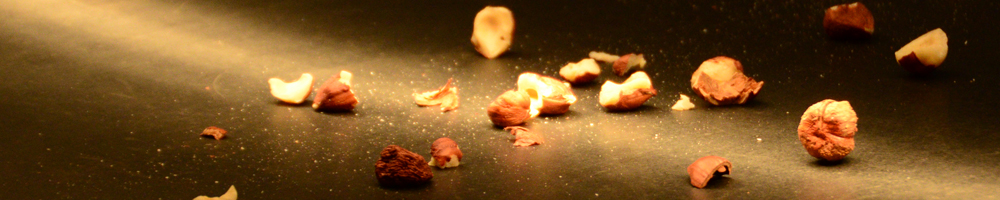 Real-time analysis of nuts and nutshells by LLA Hyperspectral camera